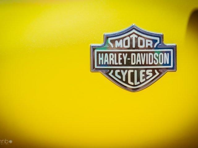 Euro festival 2012 – Harley Davidson – Objets